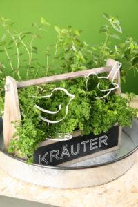 Deko Kräuterkiste